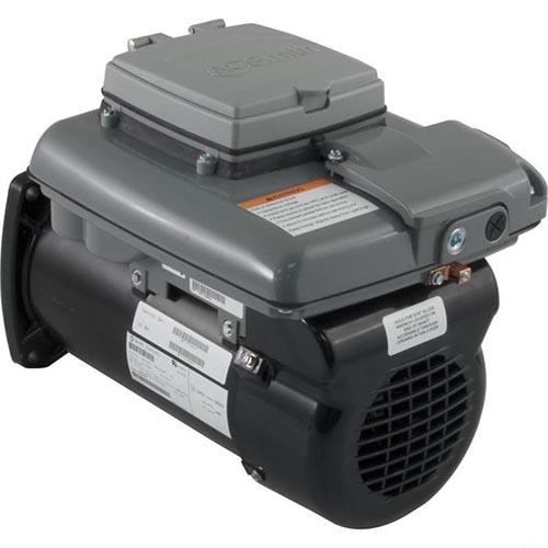 Century variable speed pump motors v green v 165 for Variable speed pool pump motors