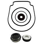 Pentair IntelliFlo Pump Seal Kit-Salt Water | TC-071734-357102-S